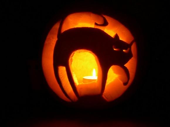 猫の形につくられたハロウィンカボチャ