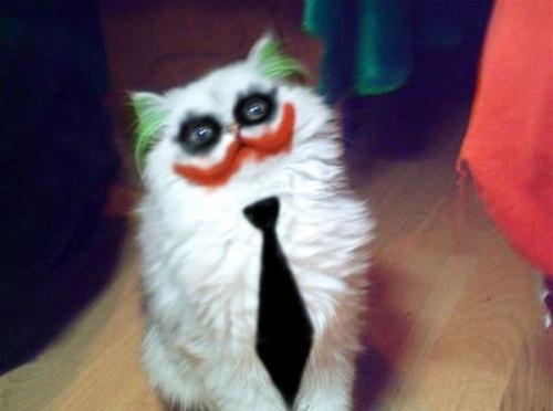 ジョーカーの仮装