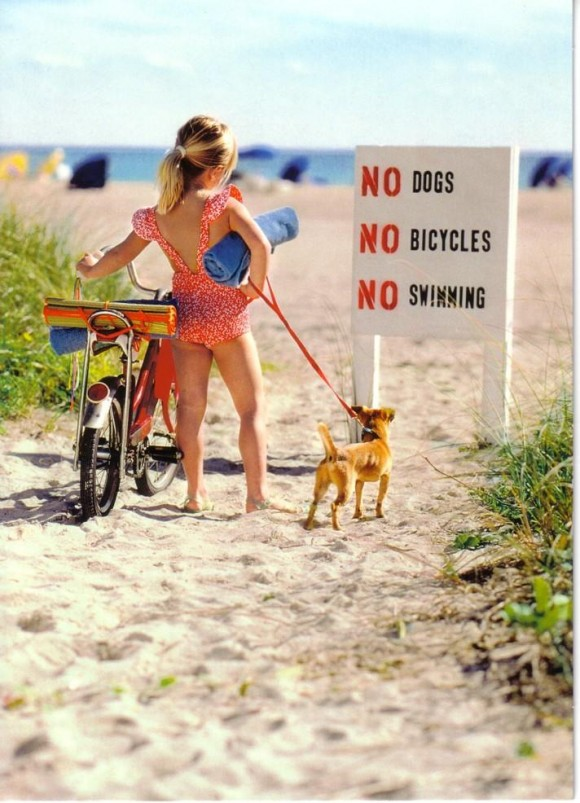 no_dogs-no_bicycles-no_swimming-01