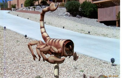 scorpion-mailbox-20