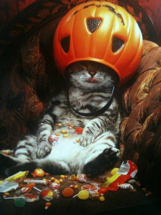 かぼちゃの王冠