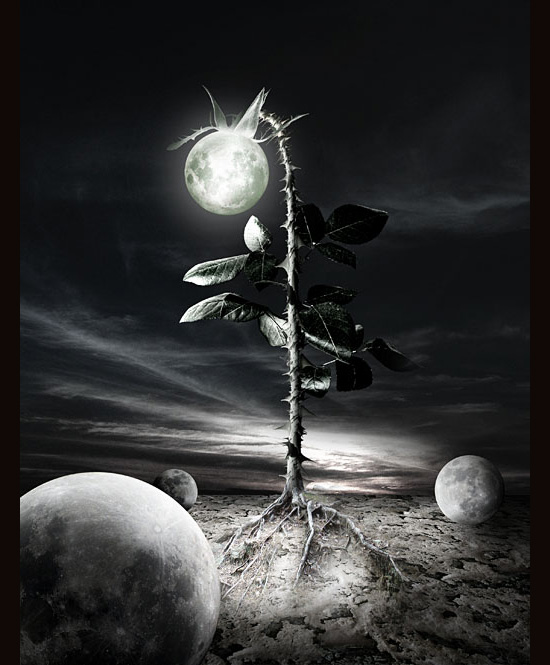 under-the-last-moon