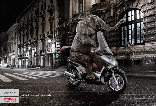 yamaha-x-city-elephant