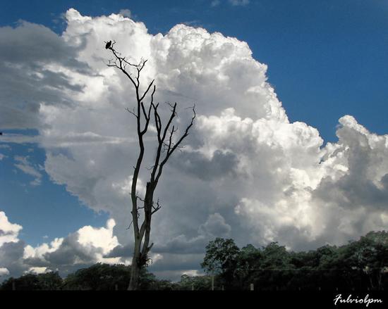 aquela-nuvem