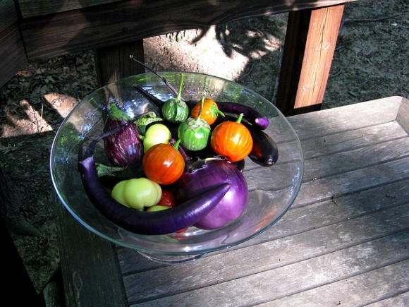 colorful-eggplant