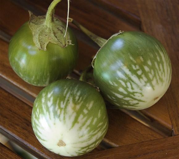 green-stripe-eggplant