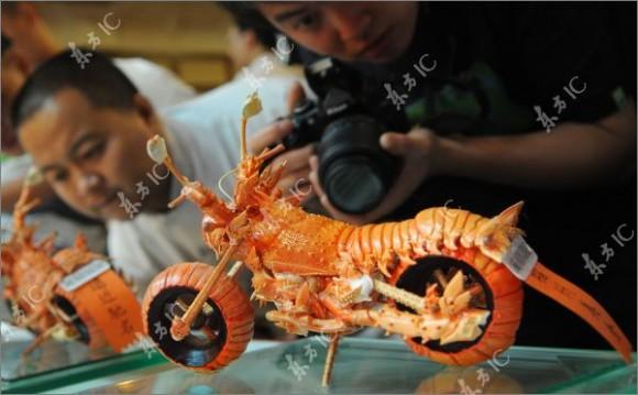 ロブスターの殻から作ったバイク