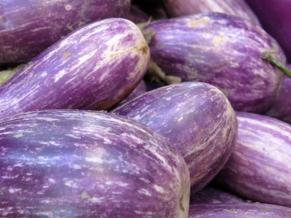 pale-purple-stripe-eggplant