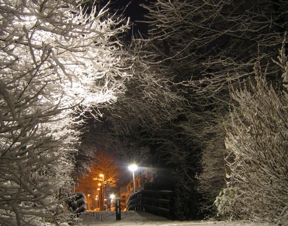 snow-day-16