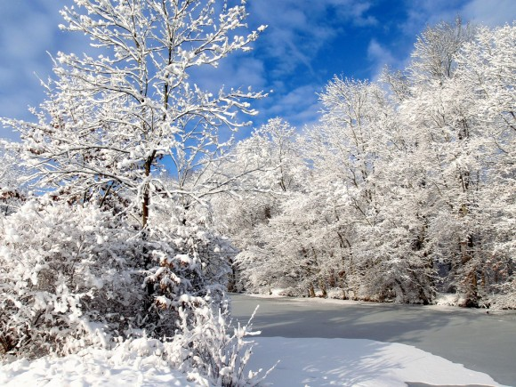 snow-day-26