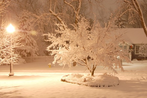snow-day-29