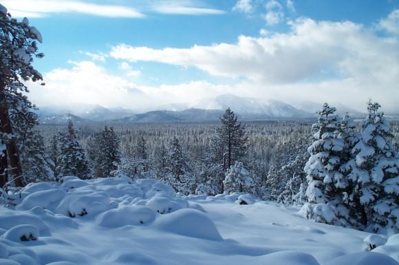 snow-day-7