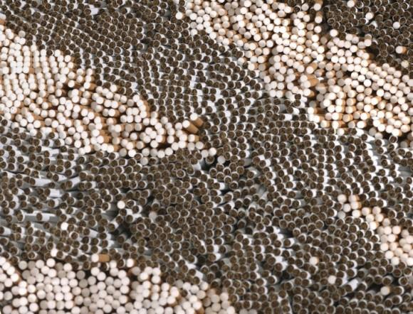 500000本のタバコで作られたトラ柄のラグ