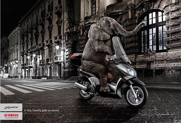 yamaha-x-city-elephant